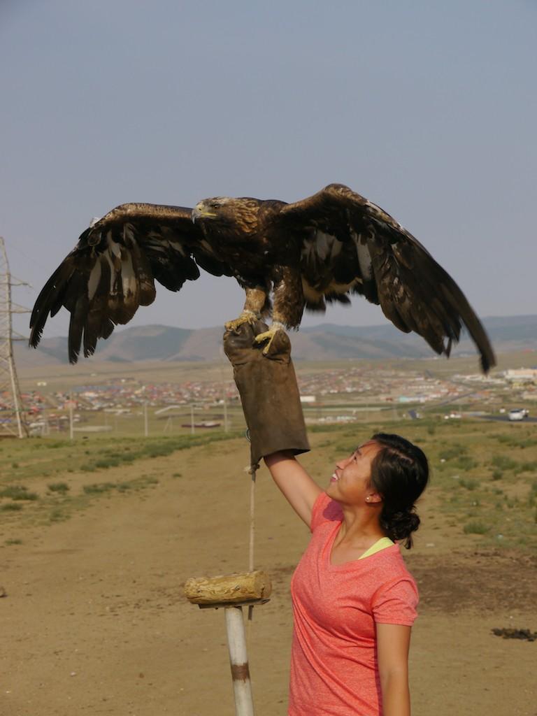 Eagle Mongolia