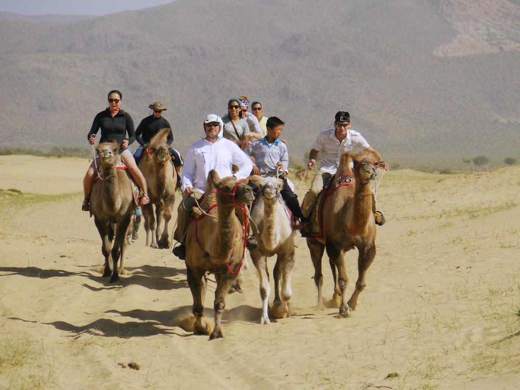 Camel riding Mongol Els Mongolia